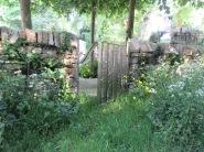 Poet's Garden 7