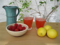 Raspberry Lemonade Jacket 2
